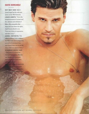 david boreanaz news