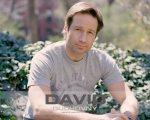 David Duchovny 26