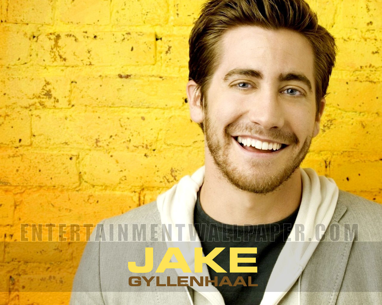 John S. Davies (actor) HD Wallpapers Jake Gyllenhaal The Male Celebrity