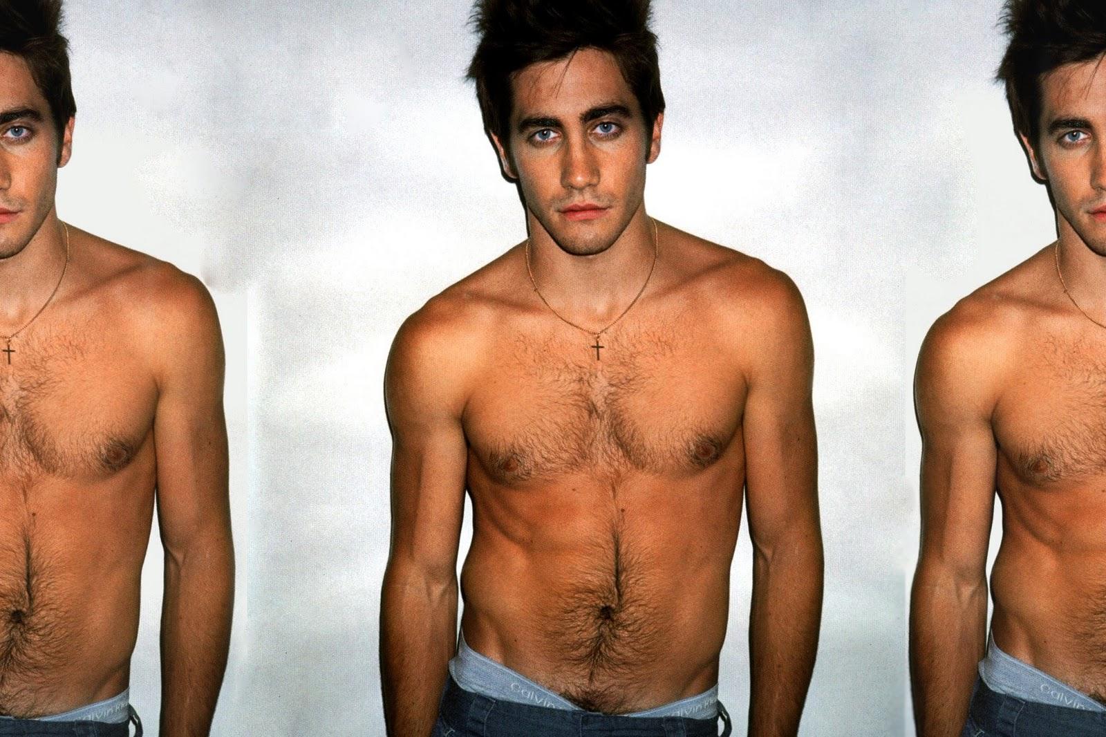jake gyllenhaal the male celebrity