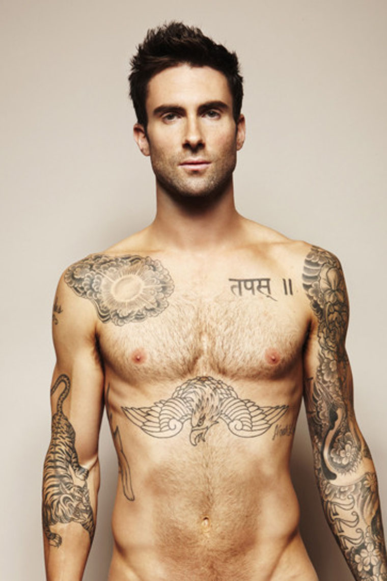 Adam Levine [Maroon 5] | The Male Celebrity